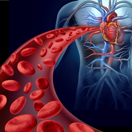 chelation therapy, cardiovascular disease, Dr. Dalal Akoury, AWAREmed