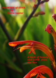 Flowers of Love by Dottie Laster